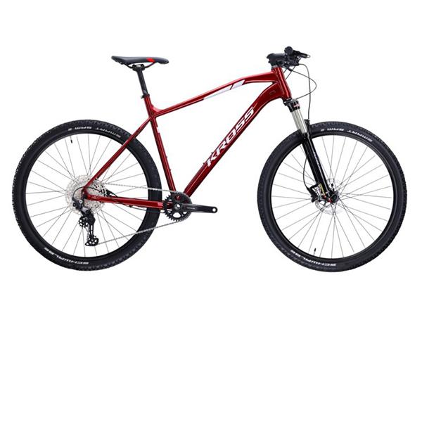 Level 6.0 (29'') L CherrySilver (VII) bike